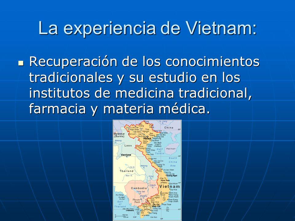 La experiencia de Vietnam: