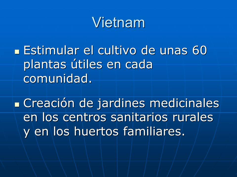 Vietnam Estimular el cultivo de unas 60 plantas útiles en cada comunidad.