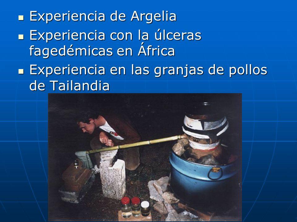 Experiencia de Argelia