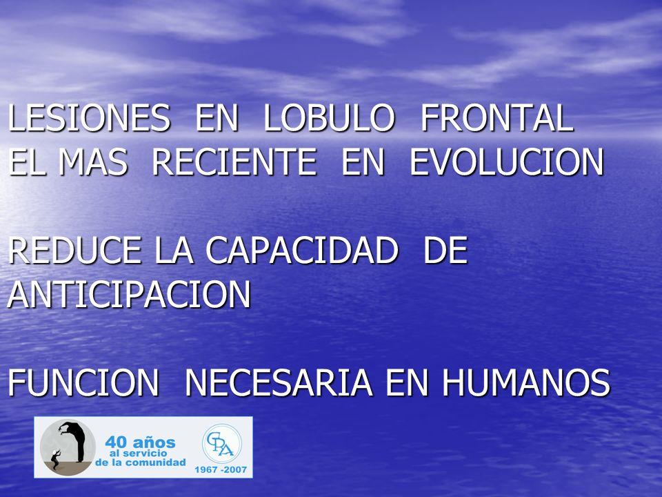 LESIONES EN LOBULO FRONTAL EL MAS RECIENTE EN EVOLUCION REDUCE LA CAPACIDAD DE ANTICIPACION FUNCION NECESARIA EN HUMANOS