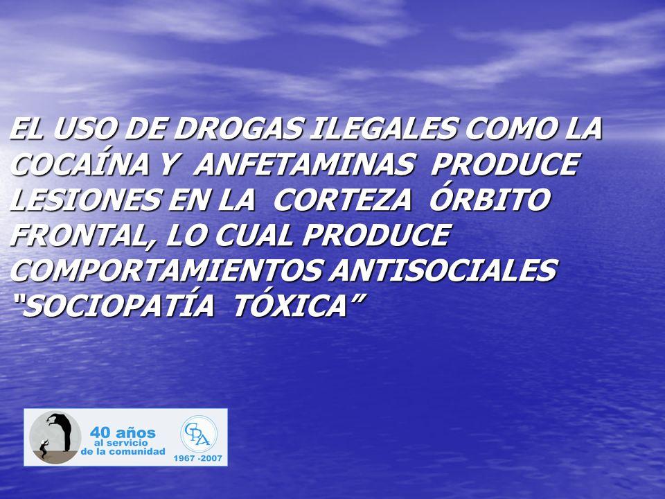 EL USO DE DROGAS ILEGALES COMO LA COCAÍNA Y ANFETAMINAS PRODUCE LESIONES EN LA CORTEZA ÓRBITO FRONTAL, LO CUAL PRODUCE COMPORTAMIENTOS ANTISOCIALES SOCIOPATÍA TÓXICA