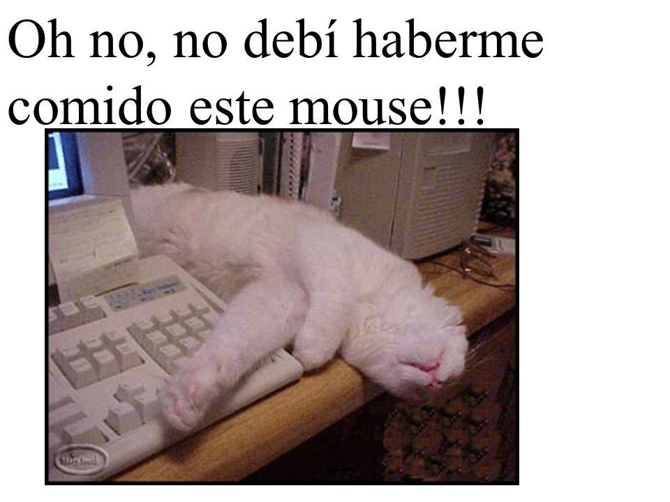 Oh no, no debí haberme comido este mouse!!!