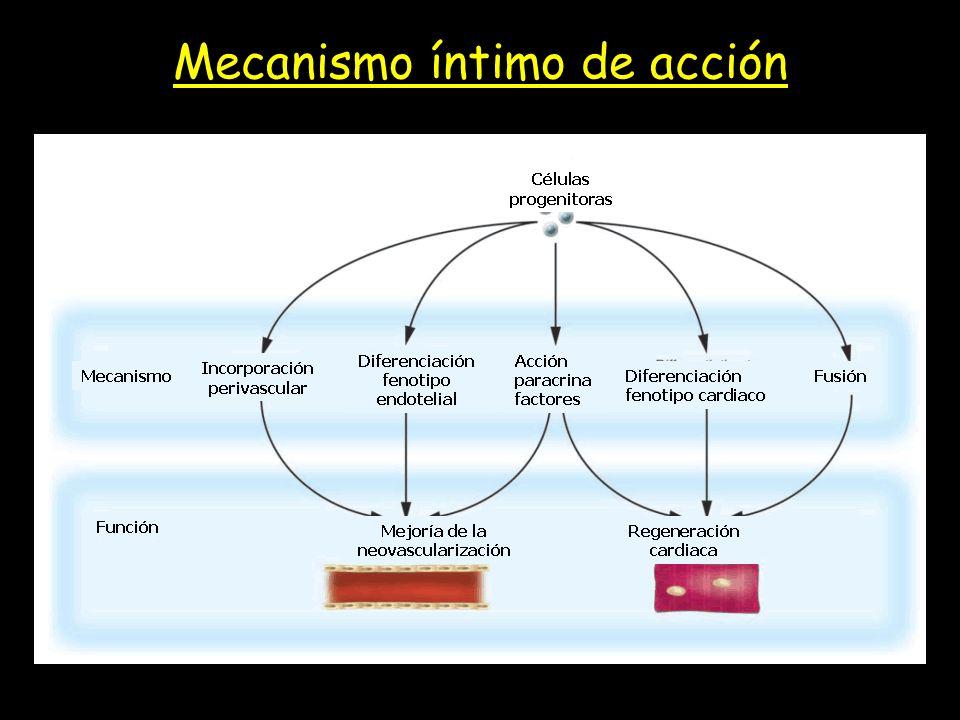 Mecanismo íntimo de acción