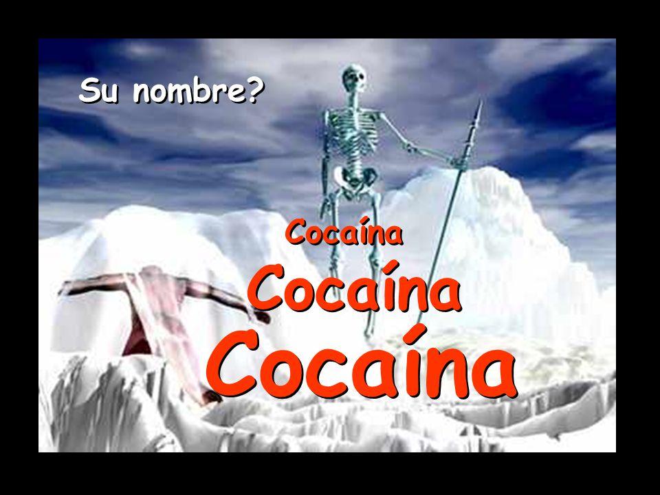 Su nombre Cocaína Cocaína Cocaína