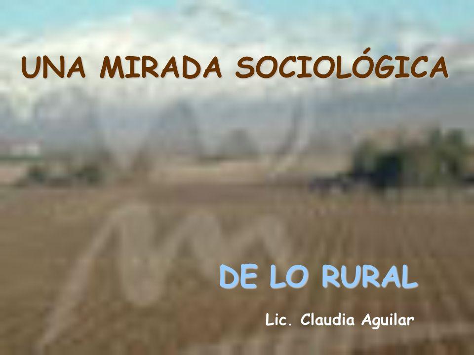 UNA MIRADA SOCIOLÓGICA