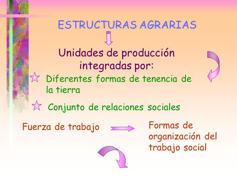 Unidades de producción integradas por: