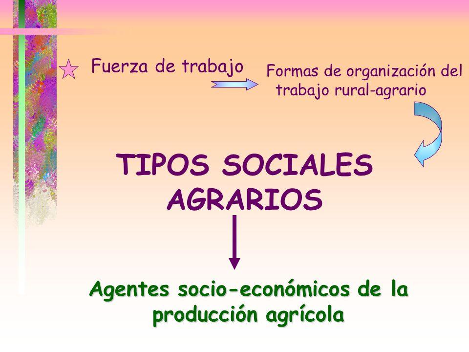 TIPOS SOCIALES AGRARIOS