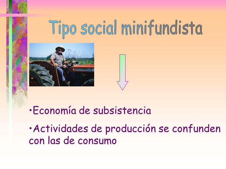 Tipo social minifundista
