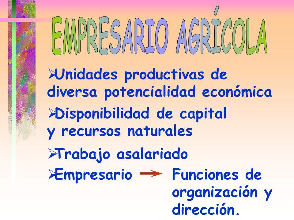 EMPRESARIO AGRÍCOLA Unidades productivas de diversa potencialidad económica. Disponibilidad de capital y recursos naturales.