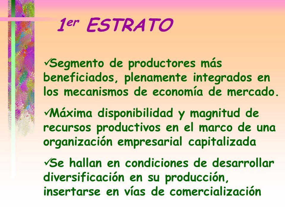 1er ESTRATO Segmento de productores más beneficiados, plenamente integrados en los mecanismos de economía de mercado.