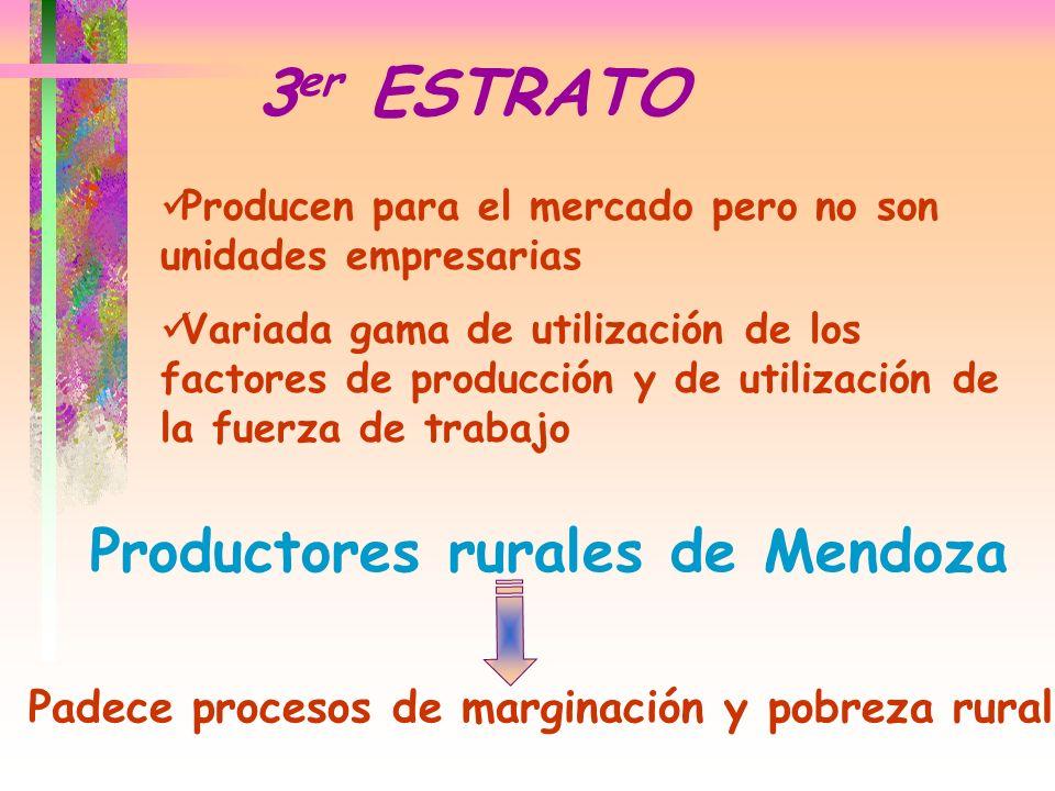 3er ESTRATO Productores rurales de Mendoza