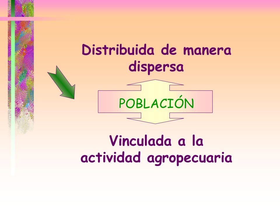 Distribuida de manera dispersa Vinculada a la actividad agropecuaria