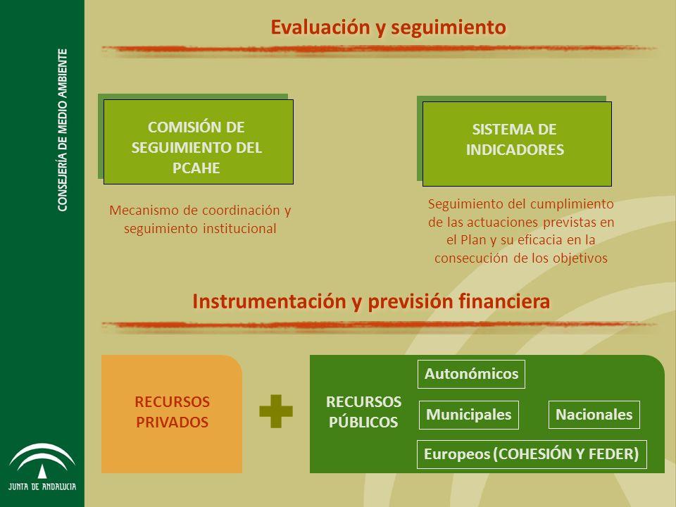 Evaluación y seguimiento Instrumentación y previsión financiera