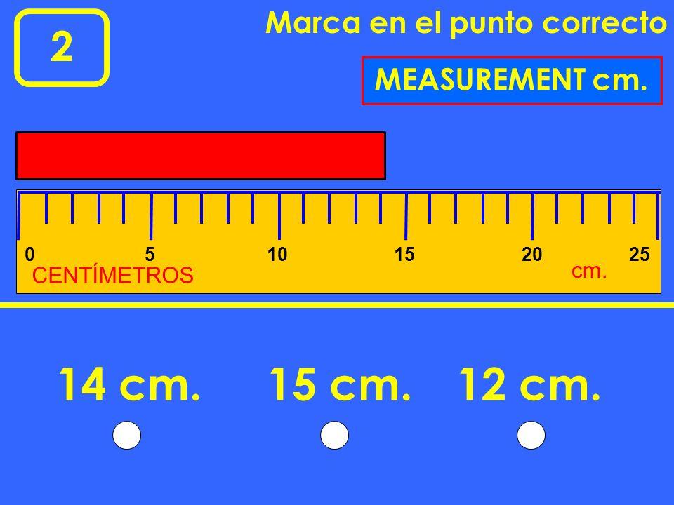 14 cm. 15 cm. 12 cm. 2 Marca en el punto correcto MEASUREMENT cm. cm.