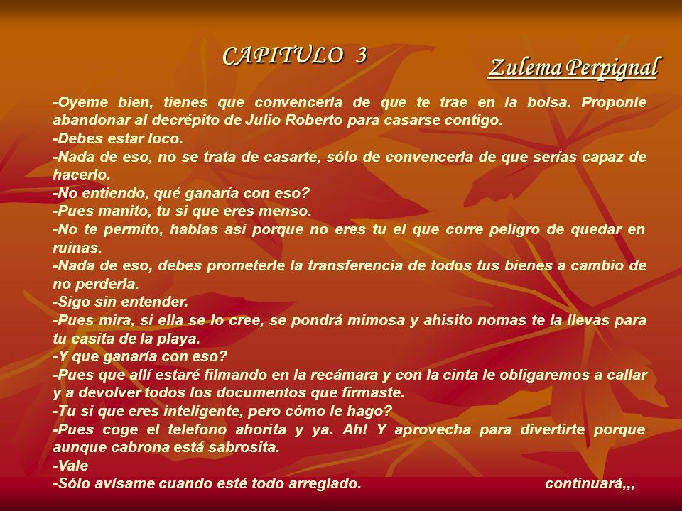 CAPITULO 3 Zulema Perpignal