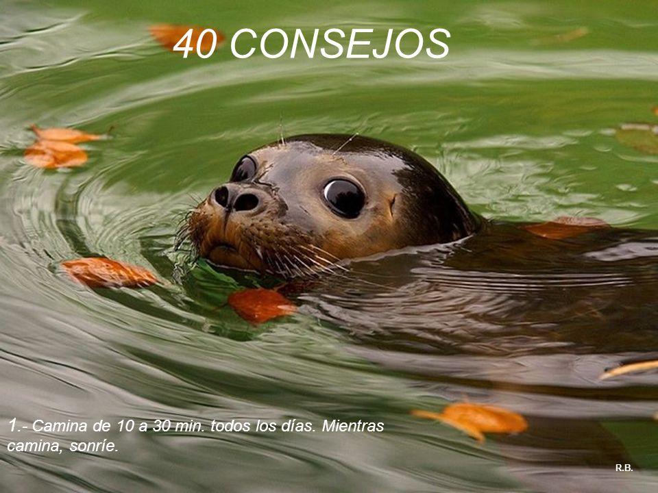 40 CONSEJOS 1.- Camina de 10 a 30 min. todos los días. Mientras camina, sonríe. R.B.