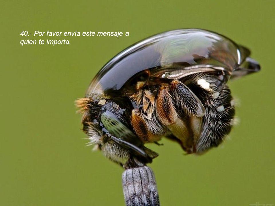40.- Por favor envía este mensaje a quien te importa.