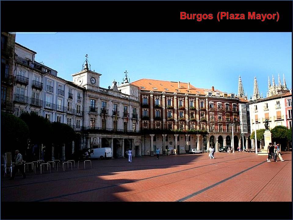 Burgos (Plaza Mayor)