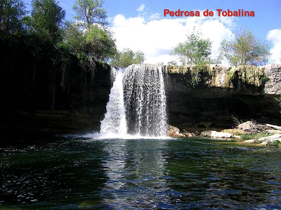 Pedrosa de Tobalina