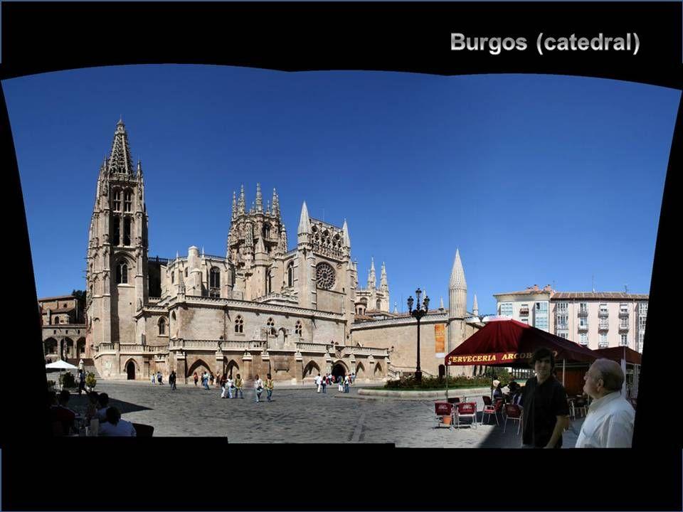 Burgos (catedral)