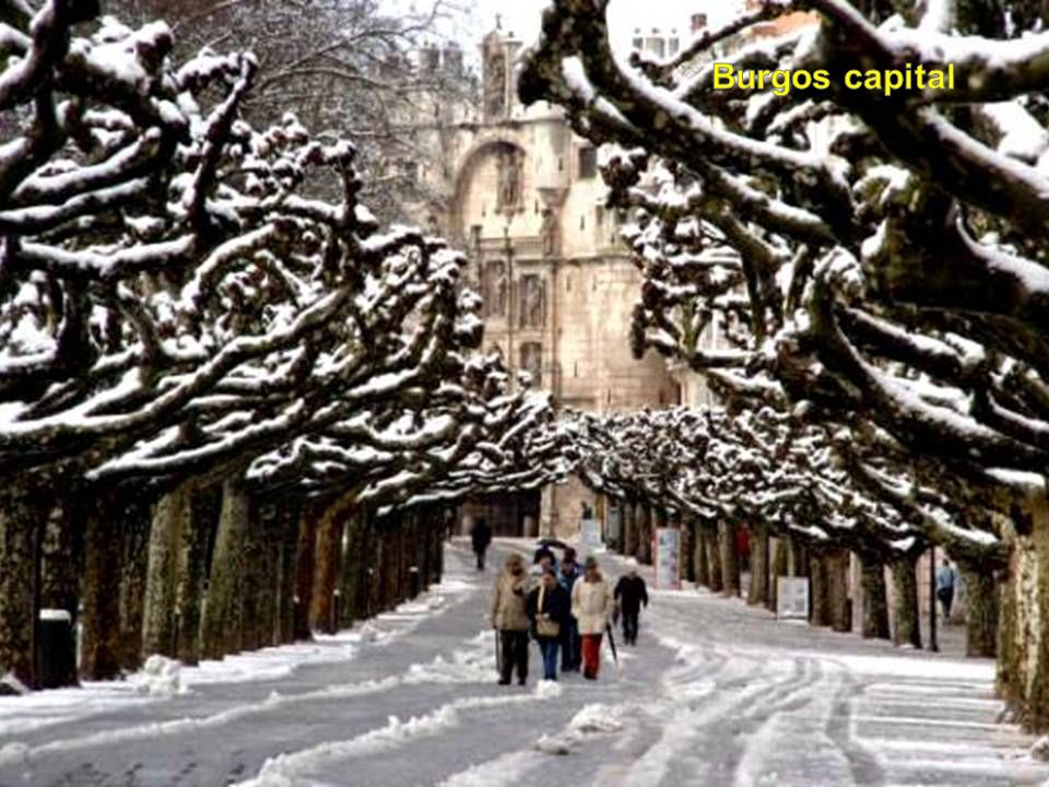 Burgos capital