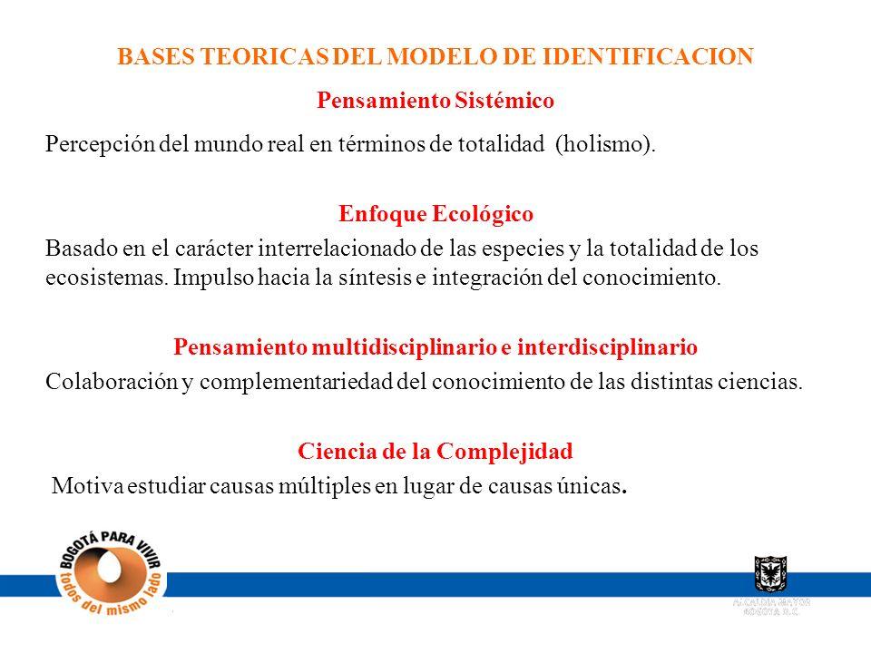 BASES TEORICAS DEL MODELO DE IDENTIFICACION Pensamiento Sistémico