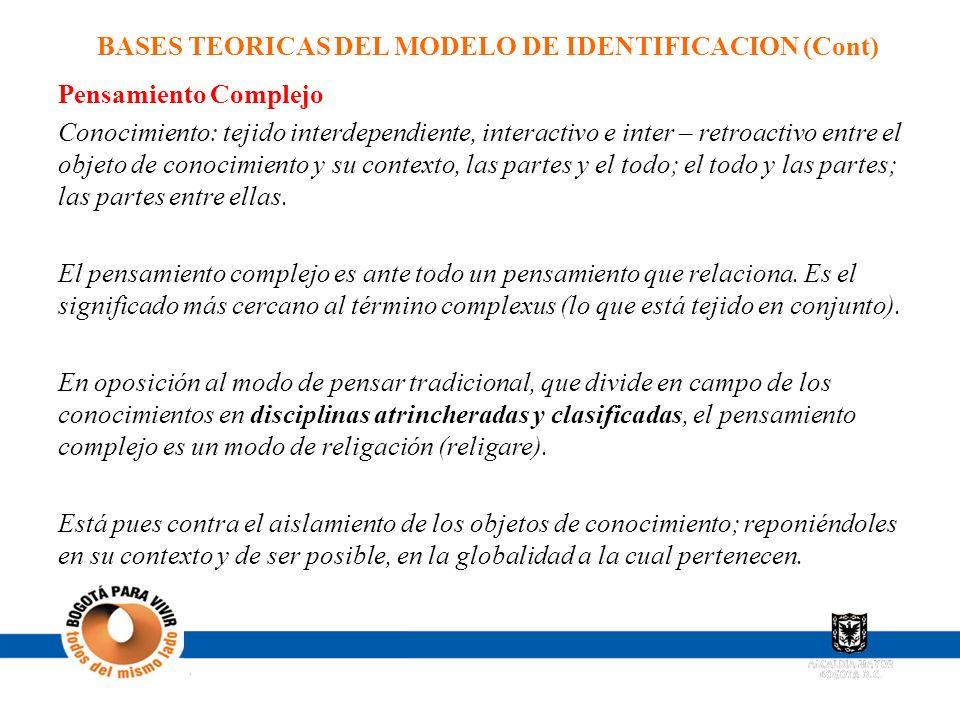 BASES TEORICAS DEL MODELO DE IDENTIFICACION (Cont)