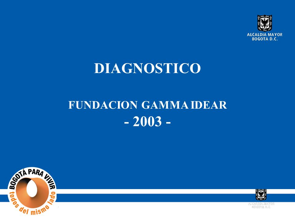 DIAGNOSTICO FUNDACION GAMMA IDEAR - 2003 -