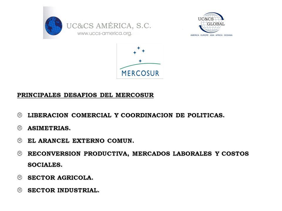 PRINCIPALES DESAFIOS DEL MERCOSUR