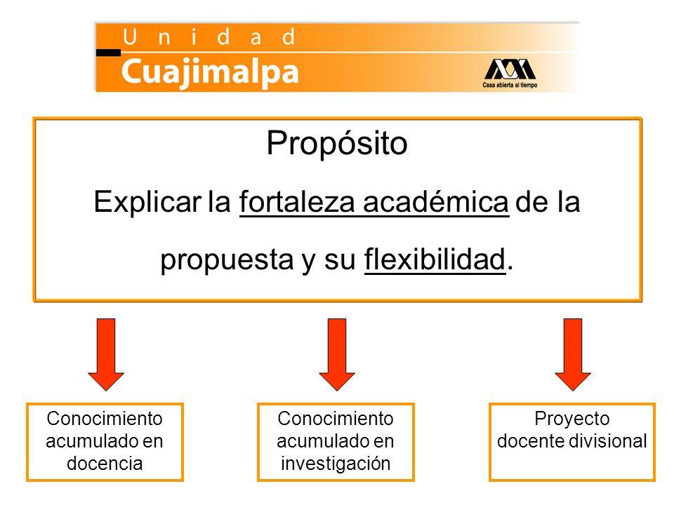 Propósito Explicar la fortaleza académica de la propuesta y su flexibilidad. Conocimiento acumulado en docencia.