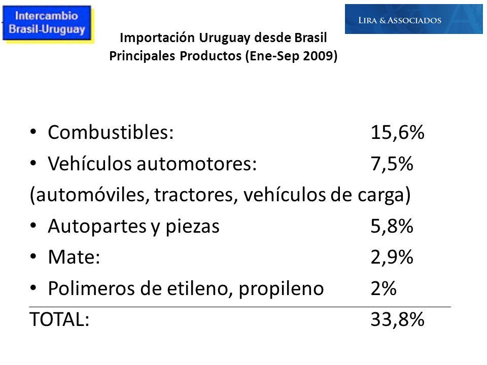 Importación Uruguay desde Brasil Principales Productos (Ene-Sep 2009)