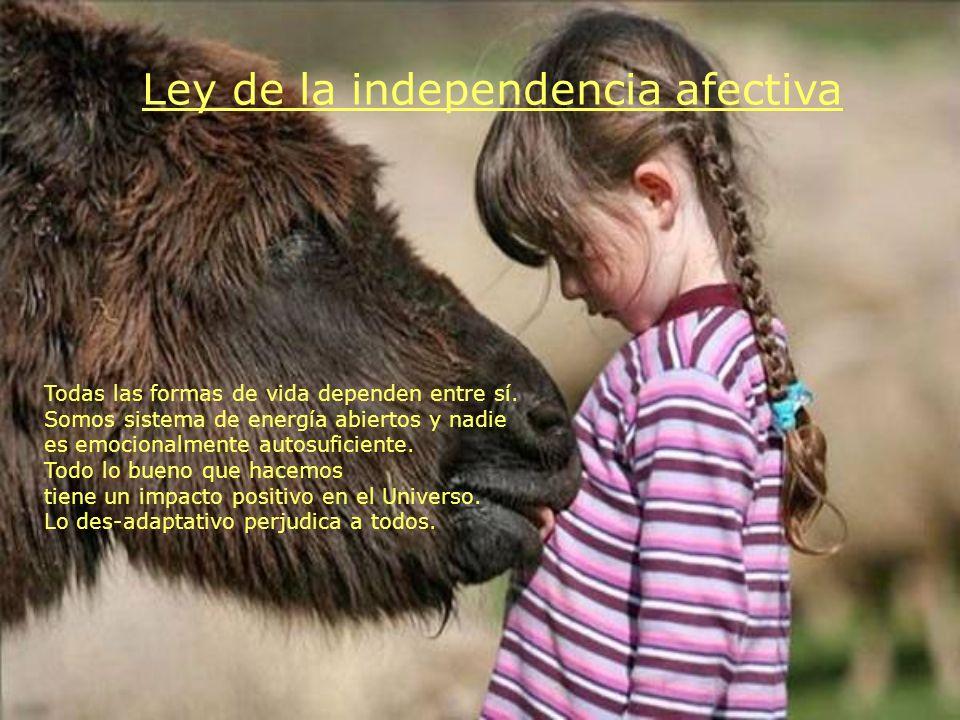 Ley de la independencia afectiva