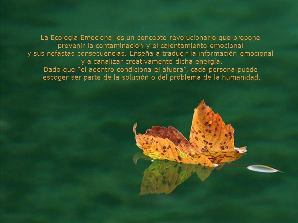 La Ecología Emocional es un concepto revolucionario que propone