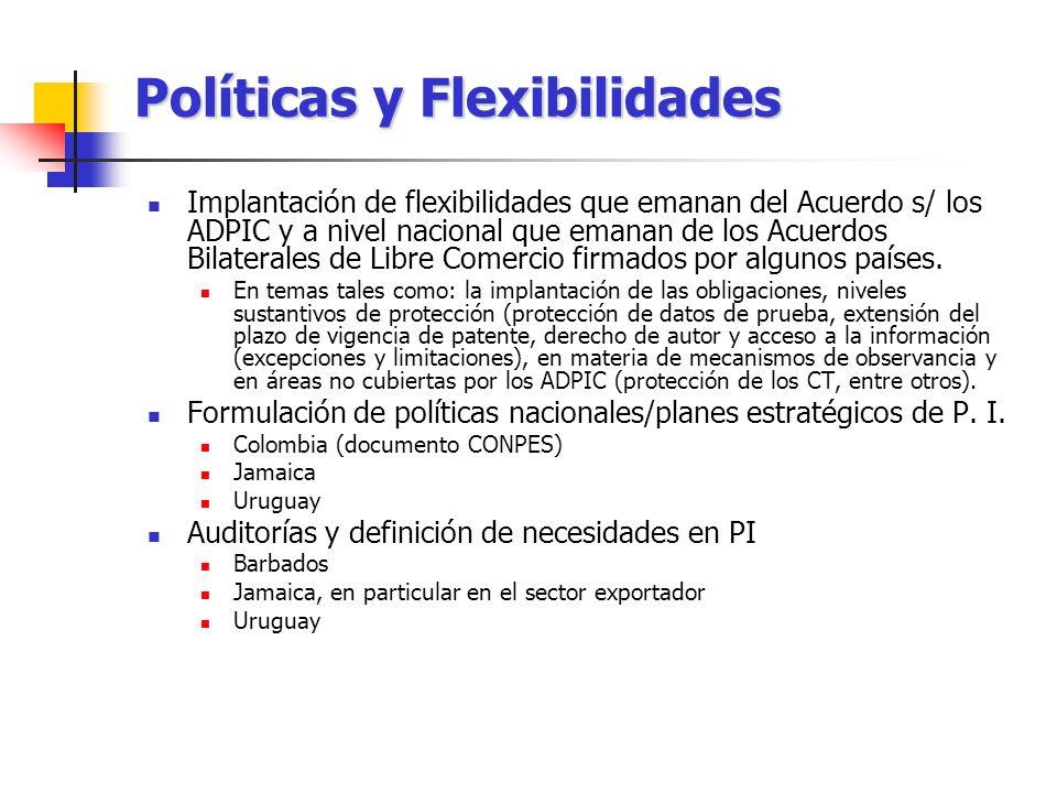 Políticas y Flexibilidades