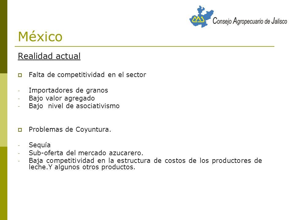 México Realidad actual Falta de competitividad en el sector