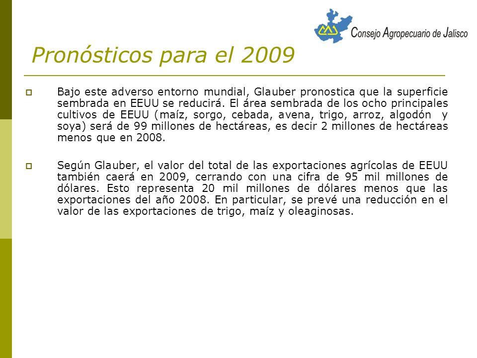Pronósticos para el 2009