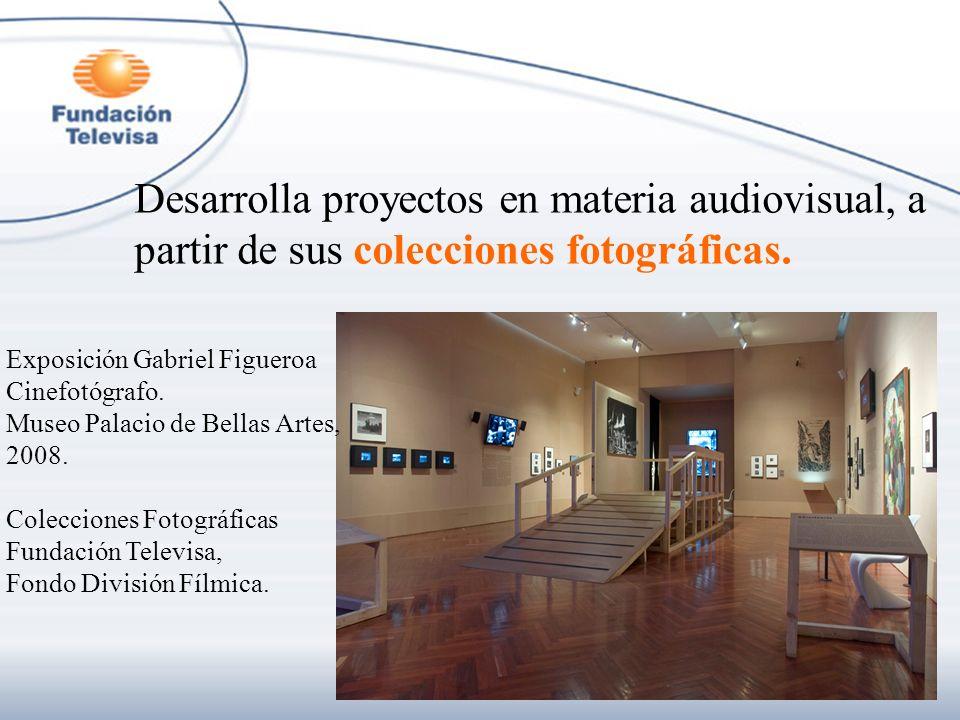 Desarrolla proyectos en materia audiovisual, a partir de sus colecciones fotográficas.