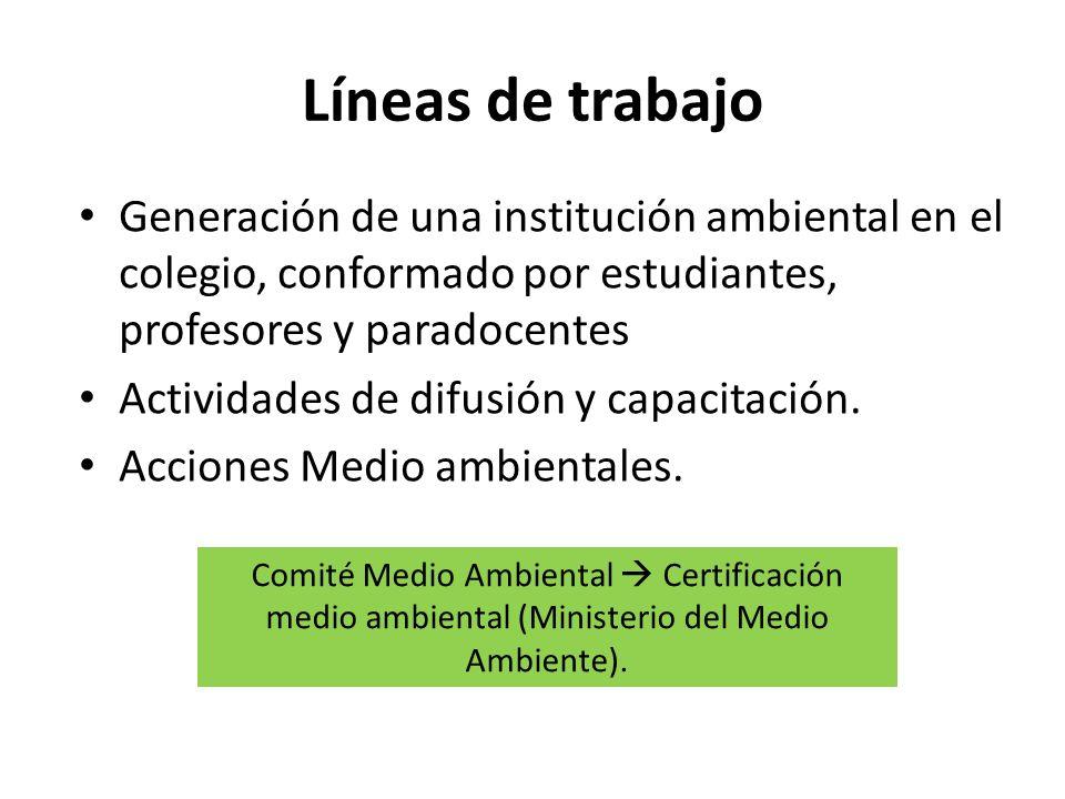 Líneas de trabajo Generación de una institución ambiental en el colegio, conformado por estudiantes, profesores y paradocentes.