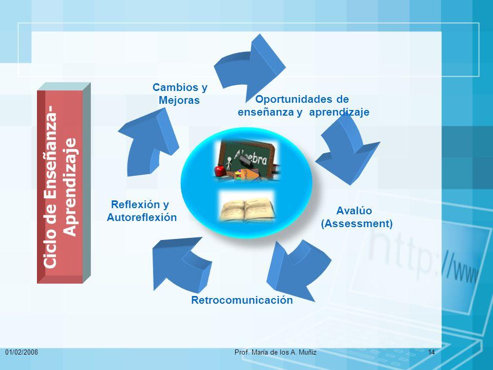 Ciclo de Enseñanza-Aprendizaje