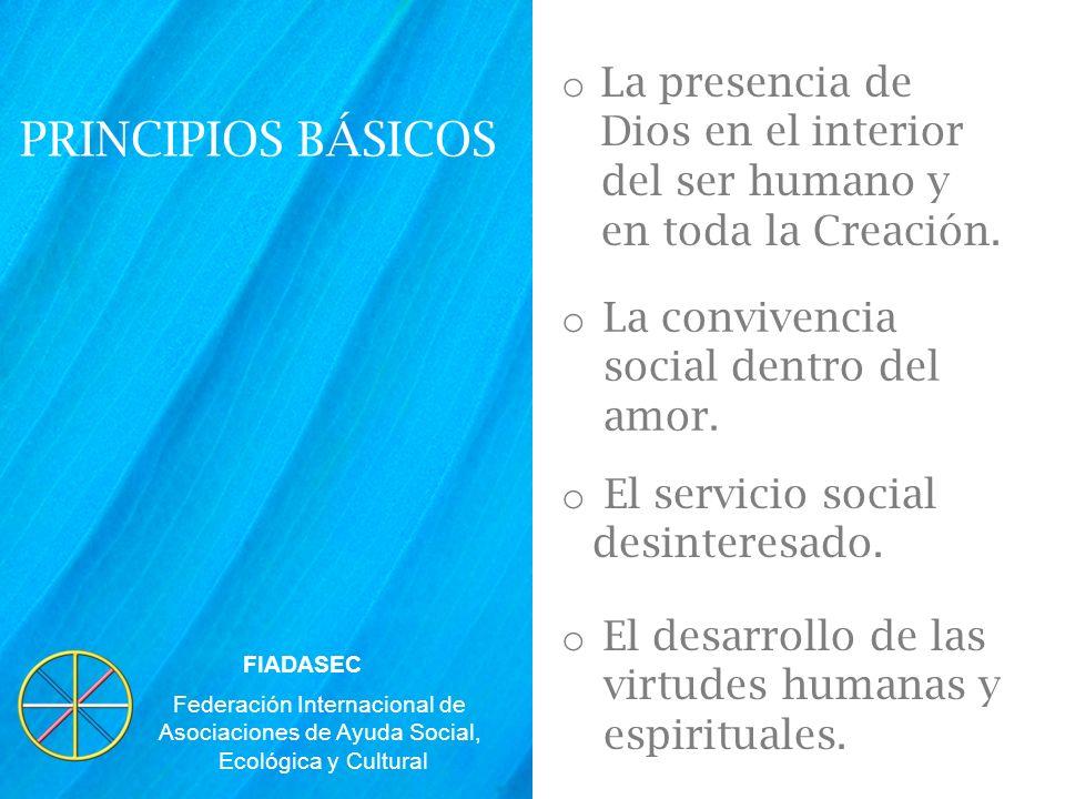 Federación Internacional de Asociaciones de Ayuda Social,