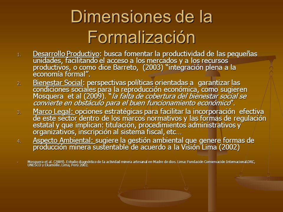 Dimensiones de la Formalización
