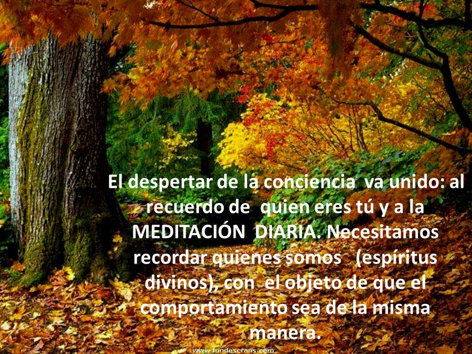 El despertar de la conciencia va unido: al recuerdo de quien eres tú y a la MEDITACIÓN DIARIA.