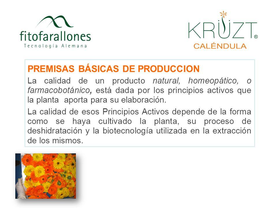 PREMISAS BÁSICAS DE PRODUCCION