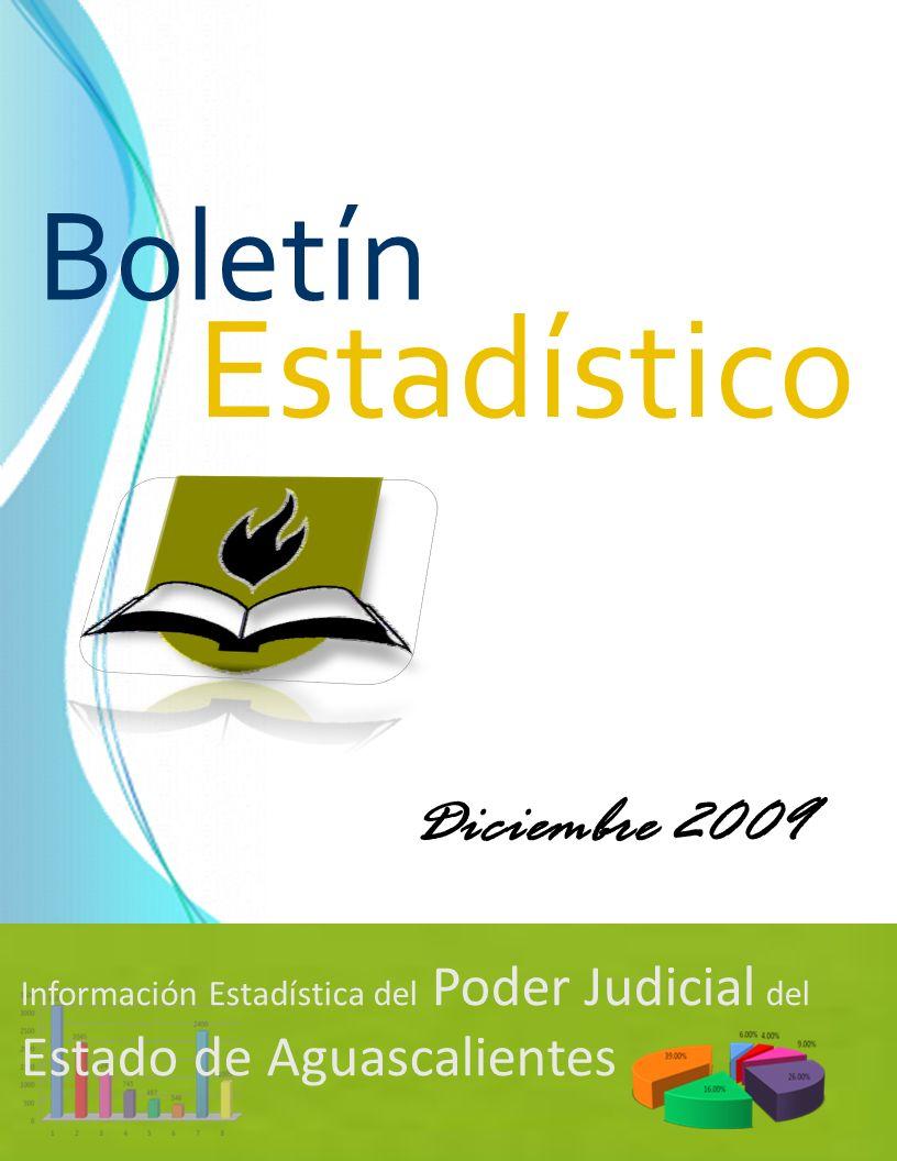 Estadístico Boletín Diciembre 2009