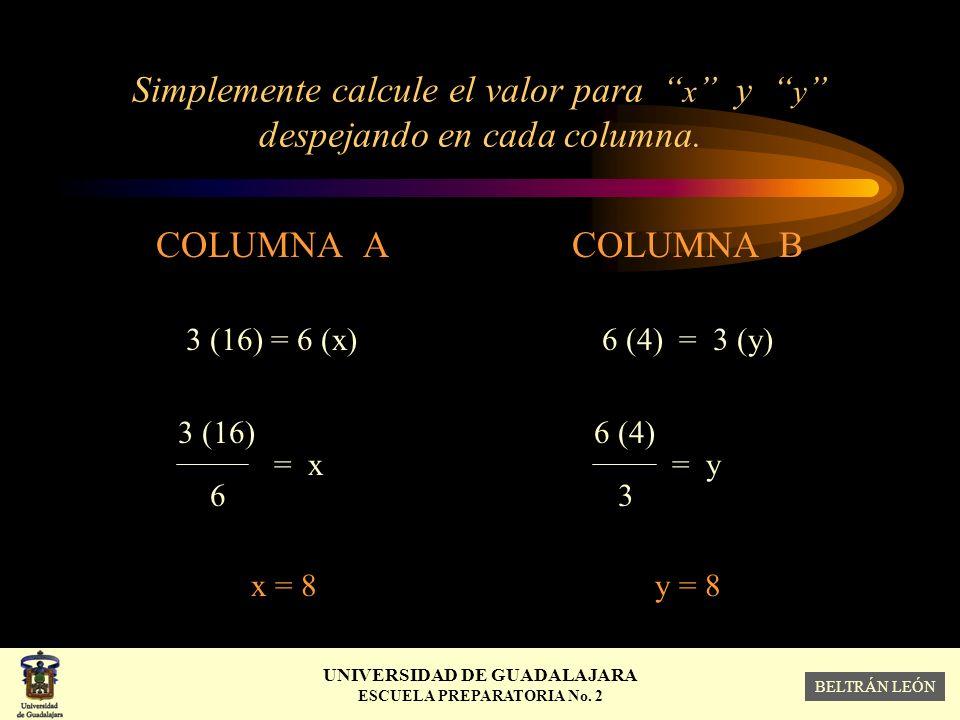 Simplemente calcule el valor para x y y despejando en cada columna.