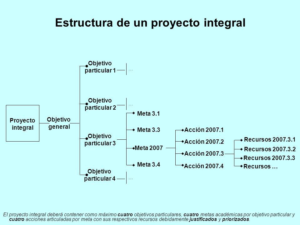Estructura de un proyecto integral