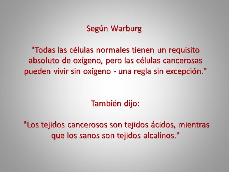 Según Warburg