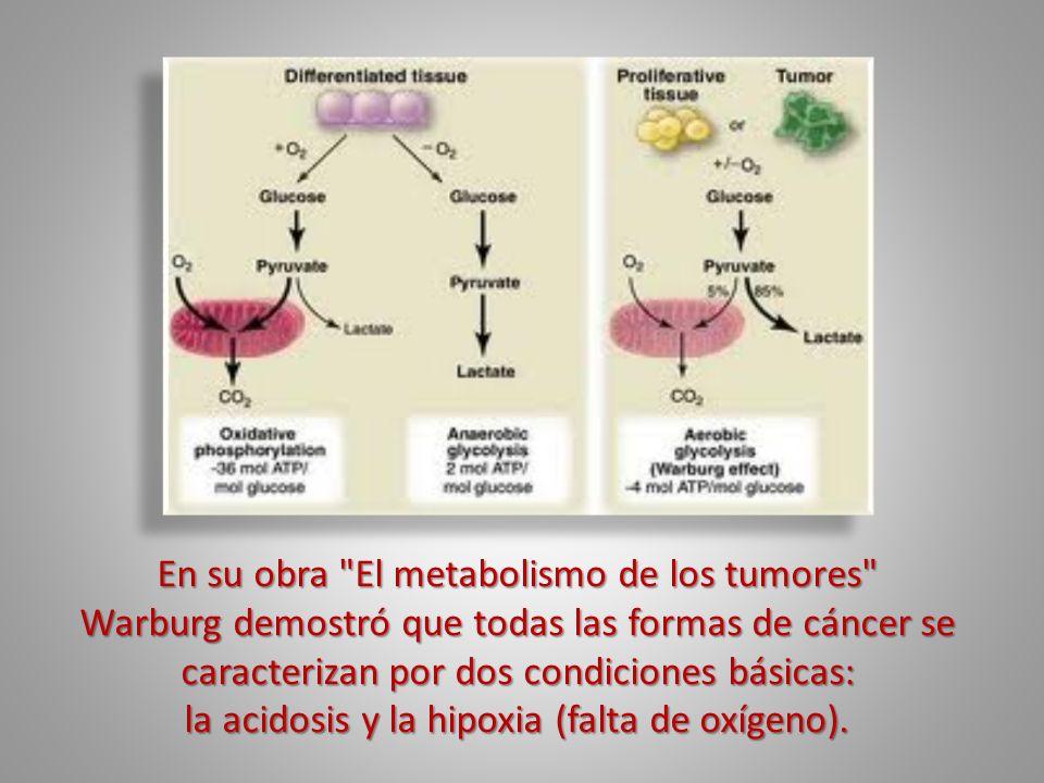 En su obra El metabolismo de los tumores