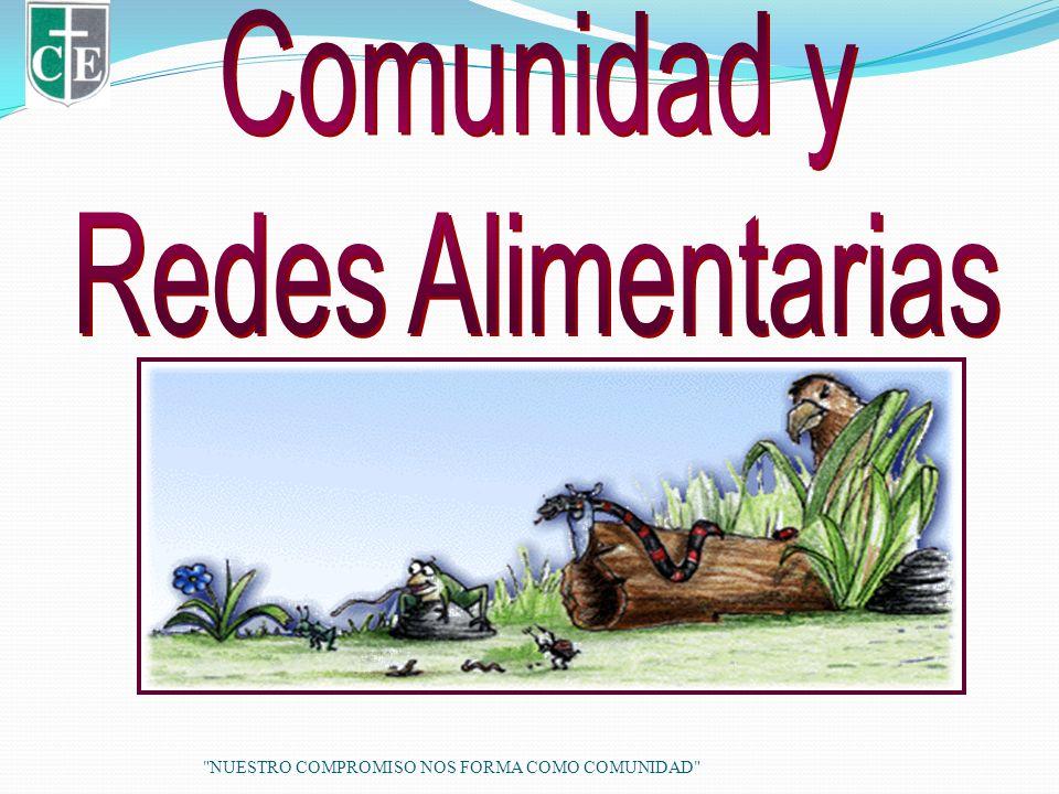 Comunidad y Redes Alimentarias