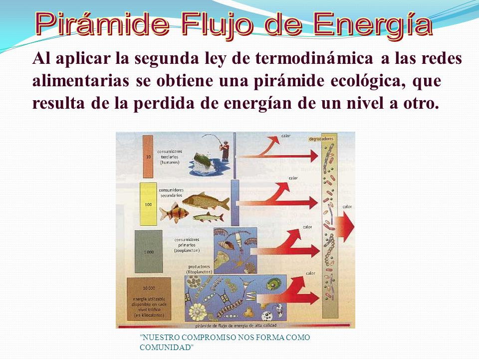 Pirámide Flujo de Energía